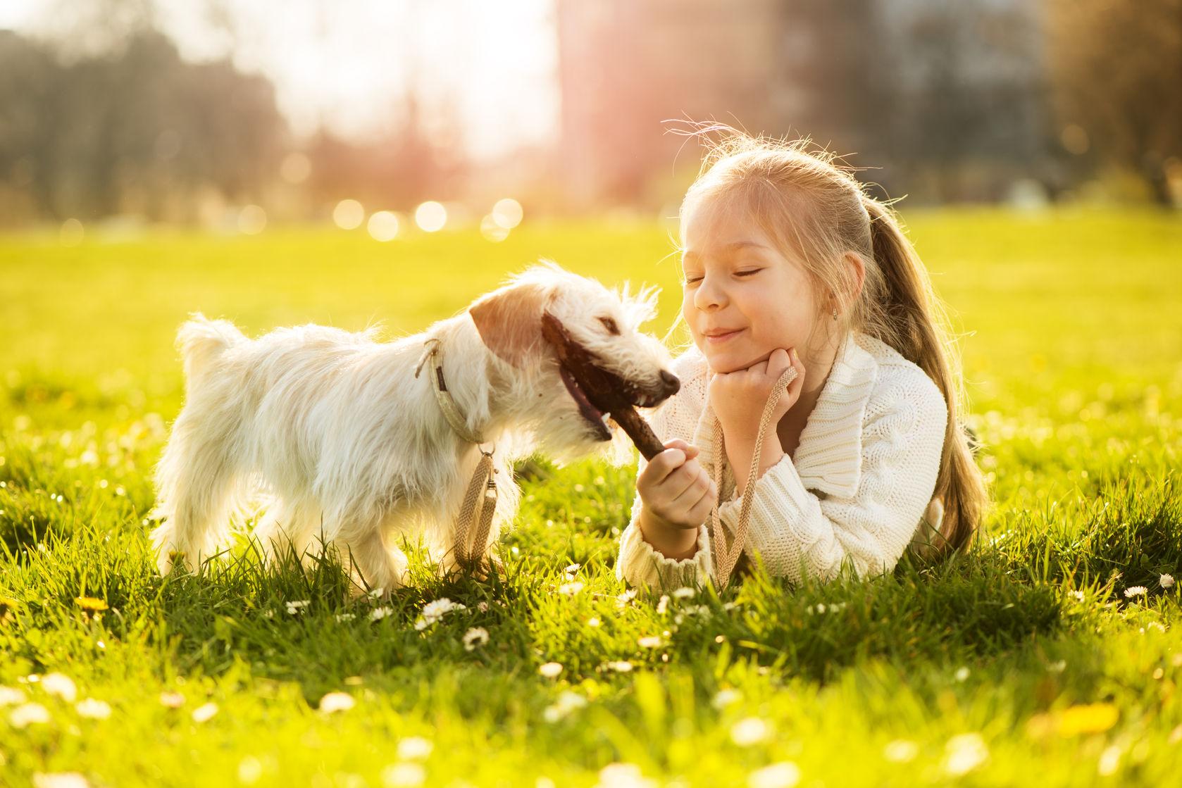 pequeña niña jugando con su cachorro en el parque